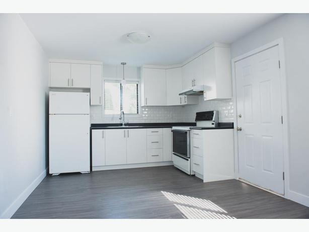 Large Bright 2BR Suite Close to Camosun Interurban