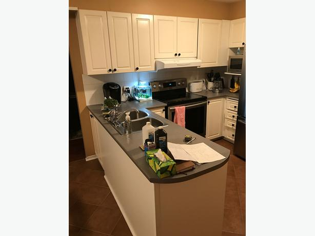 28 White Thermafoil Kitchen Cabinet Doors