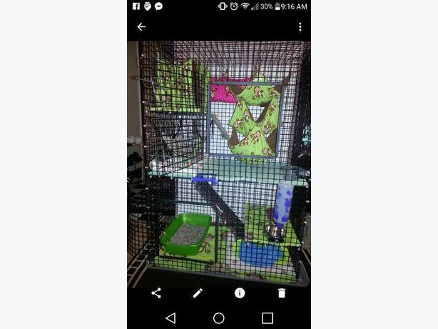 Older style Ferret Nation Cage