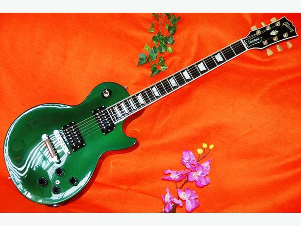 Gibson, Takamine, Fender, Yamaha, ibanez, Martin.