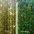 EcoHedge 10'x6' Green Privacy Artificial Hedge Sheet Panels for Chain-link Fence