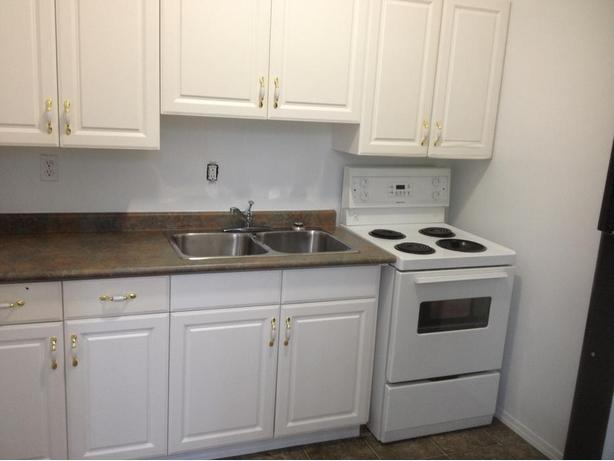 Nice Renovated 1bdrm suite Incl/Water (near Health Sciences)