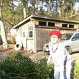 yard work, gardening, landscaping, etc