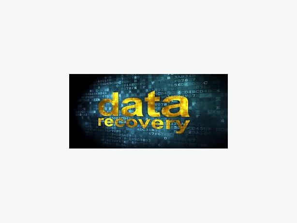 Data Recovery (Any Format)