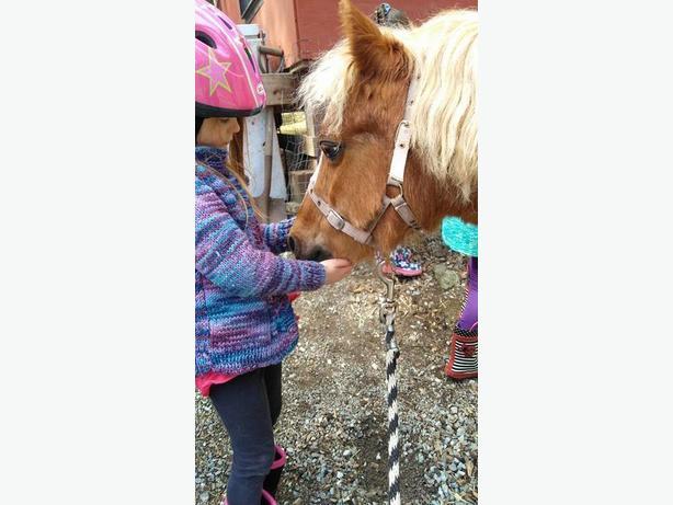 Pony parties!