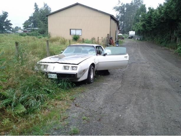 WANTED!!!!!!!!!!!! TRANS AM PARTS OR PROJECT CARS