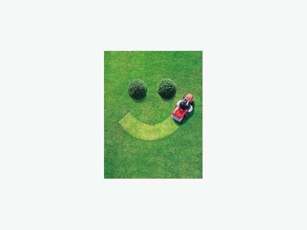 We have everything you need to create a new lawn