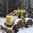 Insured Tree Services / Logging / Firewood