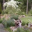 Home in Port Alberni,BC Canada on 4.5 acres