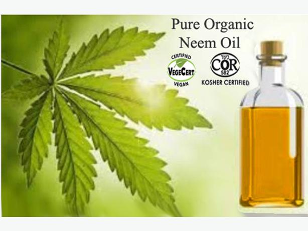 New Unused Natural Pure Neem Oil - Starting at $25