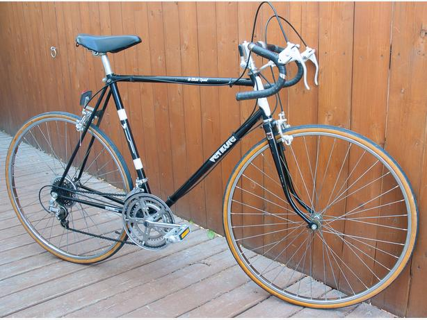 Venture 10 Speed Bike - Canadian Built in Minty Condition
