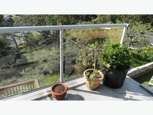 Glass Aluminum Deck Railing