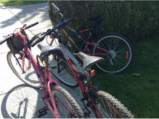 FREE: 3 bikes