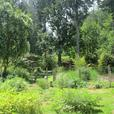 5 Acre Homestead/Hobby Farm in Lund BC