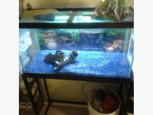 fishtank and stand -reduced