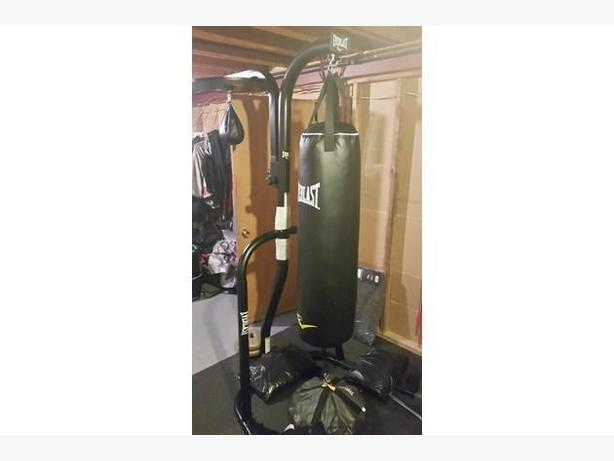 Everlast Punching Bag and Stand with Speed Ball