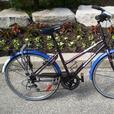 Batavus Eagle women's 15 inch 6-speed, equipped Dutch bike