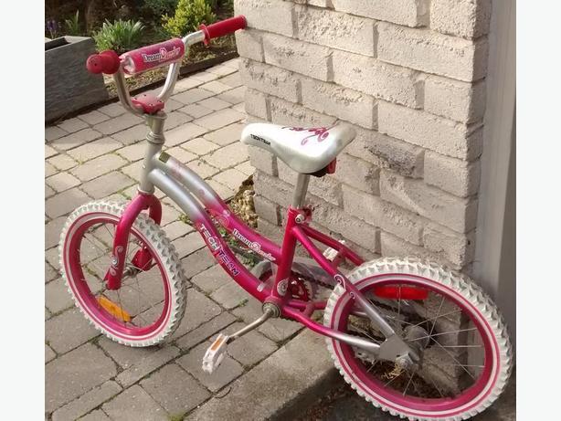 Dream Dazzler Girl's Bike