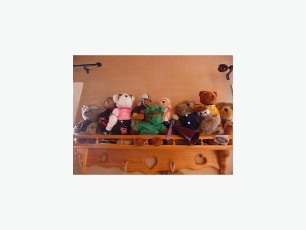 Collection of 50 Collectible Teddy Bears