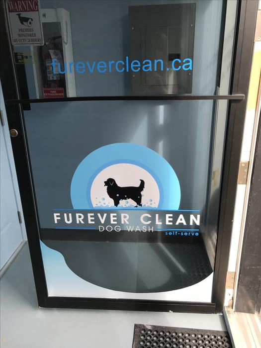 Self serve dog wash wash your dog yourself esquimalt view royal self serve dog wash wash your dog yourself esquimalt view royal victoria solutioingenieria Choice Image