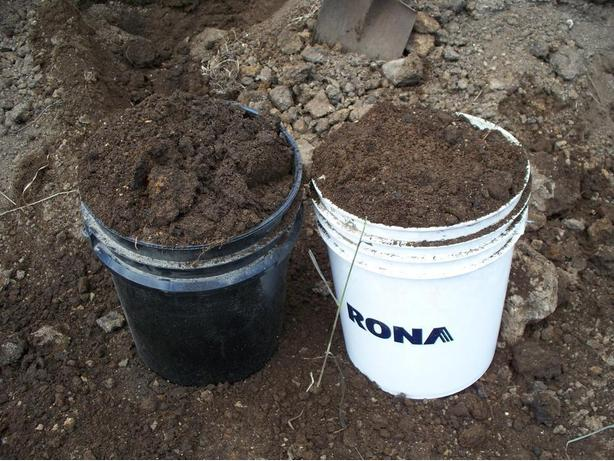Organic Manure Compost by the pail