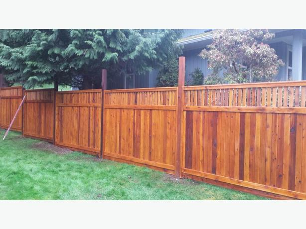 [SALE] THICKEST CEDAR  FENCE PANEL STARTING At $70.00