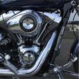 2008 Harley-Davidson® FXDL