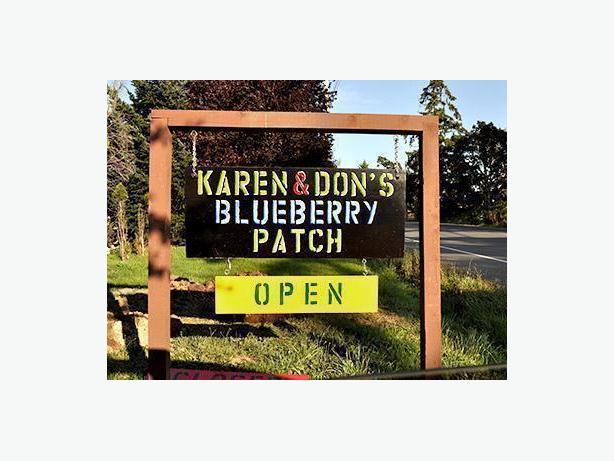 Metchosin Blueberries and Honey