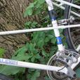 vintage Raleigh Record