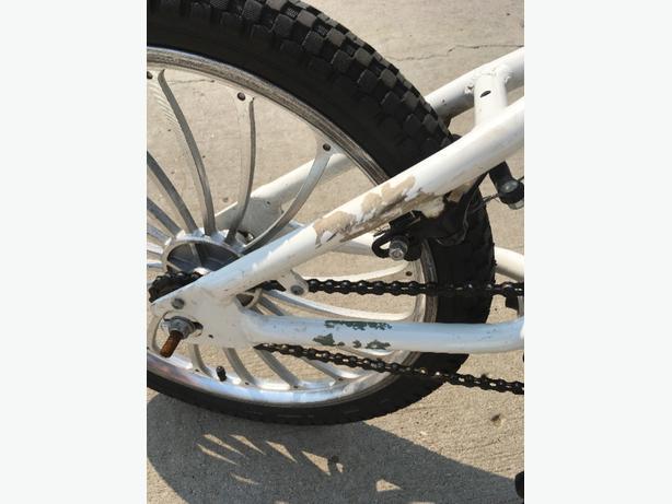 """20"""" Avigo Bike"""