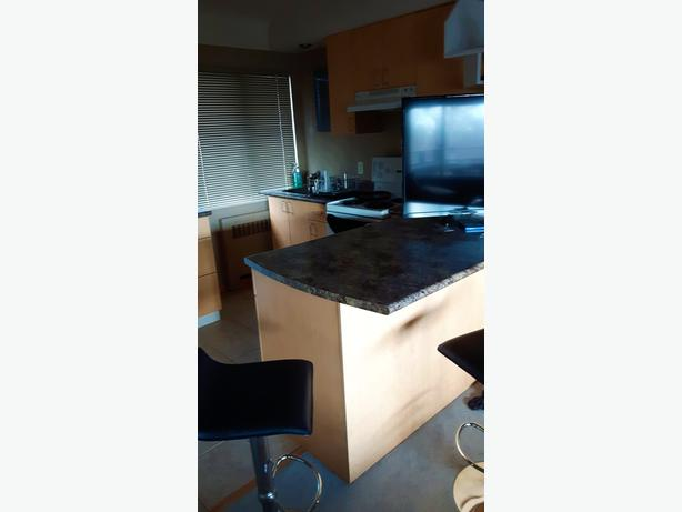 1 BR furnished top floor large patio available now