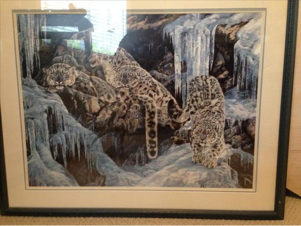 Artist Andrew Kiss print of the snow leopards