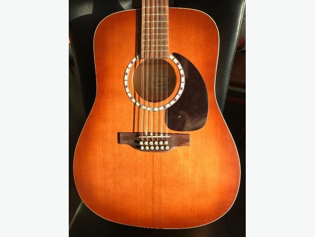 Art & Lutherie 12 string like NEW