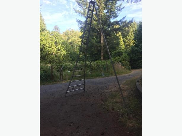 16' orchard ladder