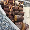 **ARBUTUS FIREWOOD for sale**