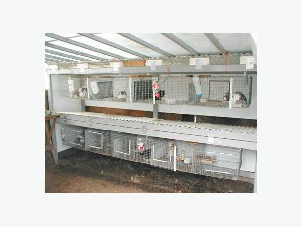 Rabbit Hutches, cages and lots of Equipment