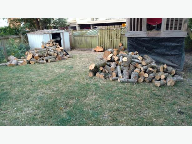 FREE: firewood 1.5 - 2 cord (ON HOLD)