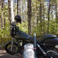 Roland sands Harley Davidson seat.