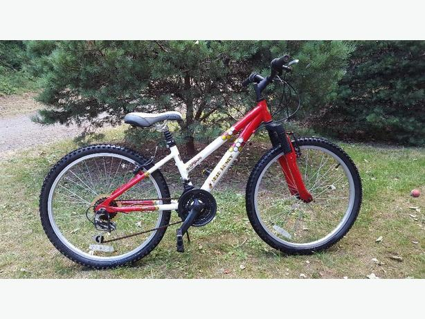 21 speed Adams Mud Honey with Glide shock absorber post and Unity sport seat