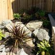 Complete Landscape Design, Construction and Maintenance