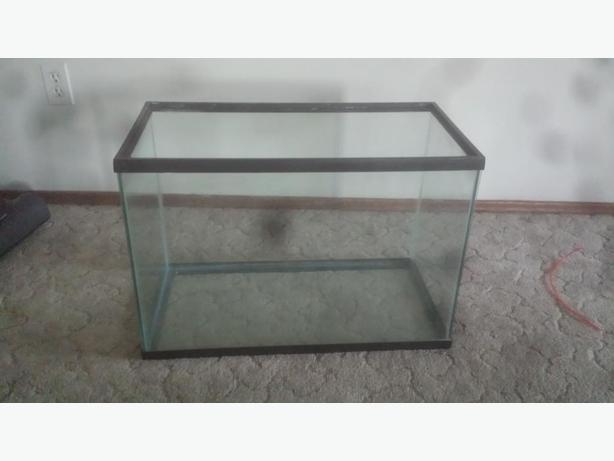 65 gallon fish tank