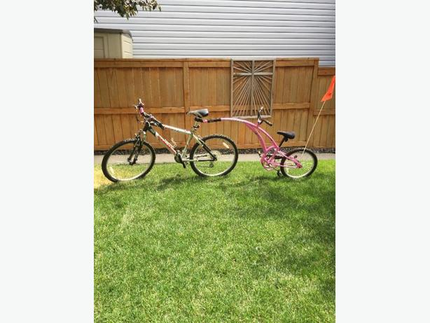 Adams Girl's Trail-A-Bike