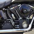 2007 Harley-Davidson® FLSTSC
