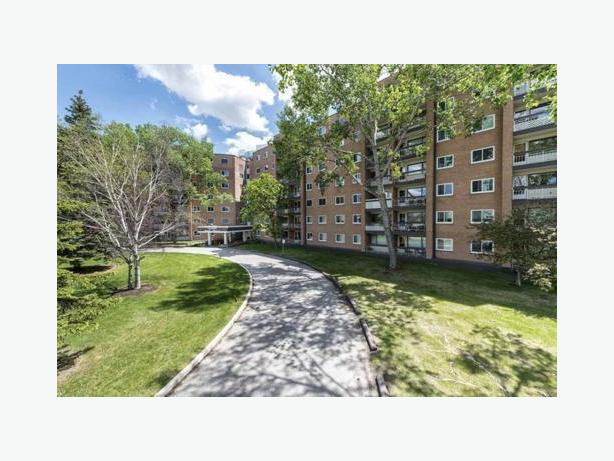 Bright & spacious pet friendly 1 Bedroom Apt available Sep 1