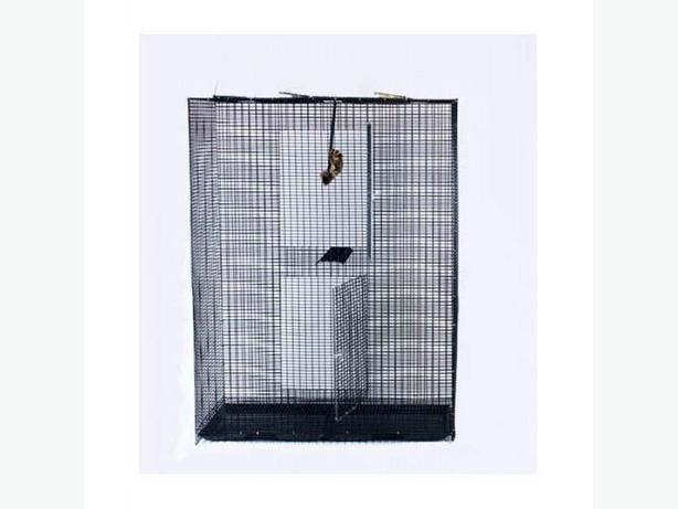 Large cage for sale(new condition)