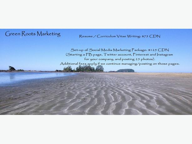 resume writing amp cover letter writing outside comox valley