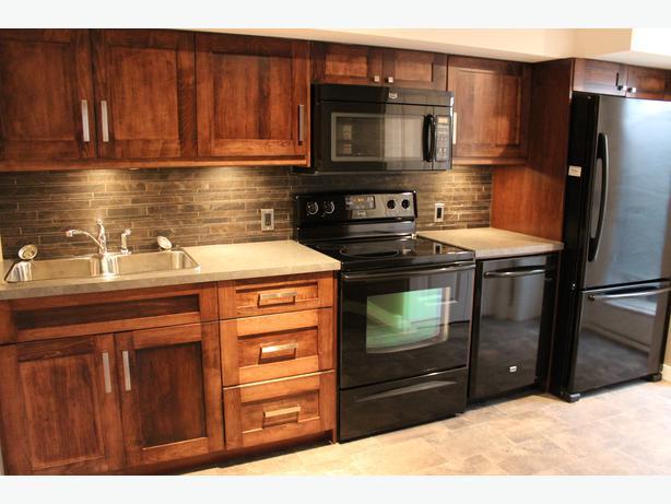 2 bedroom Basement Suite October 1 Douglas Park Close to U of R