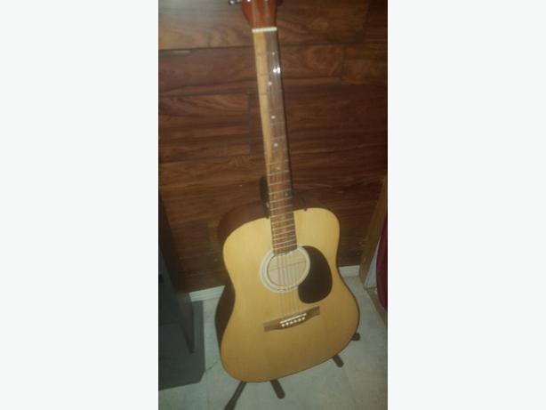 Acoustic Guitar w/ Stand