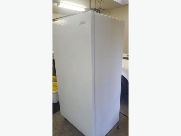 large standup freezer