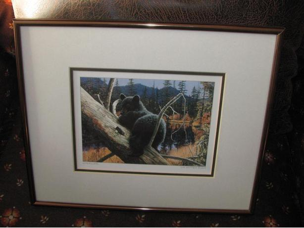 Variety of Pictures & Pictures Frames for Sale – In Excellent Condition
